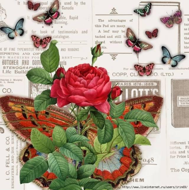 laminas-flores-decoupage-10
