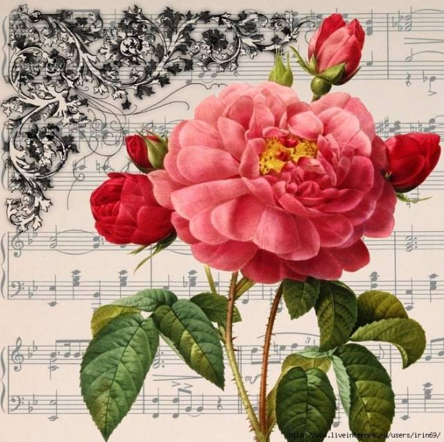 laminas-flores-decoupage-12