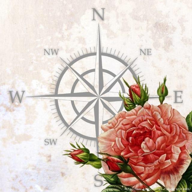 laminas-flores-decoupage-3