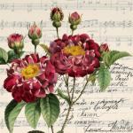 laminas-flores-decoupage-7
