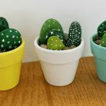 cactus-hechos-de-piedra