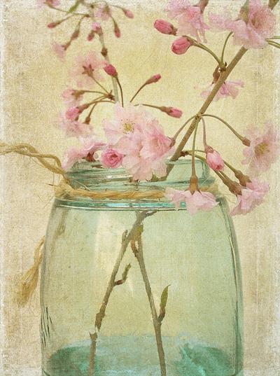 Láminas de flores para decoupage 7