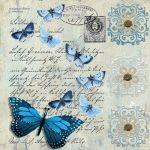 Lámina-mariposas-10