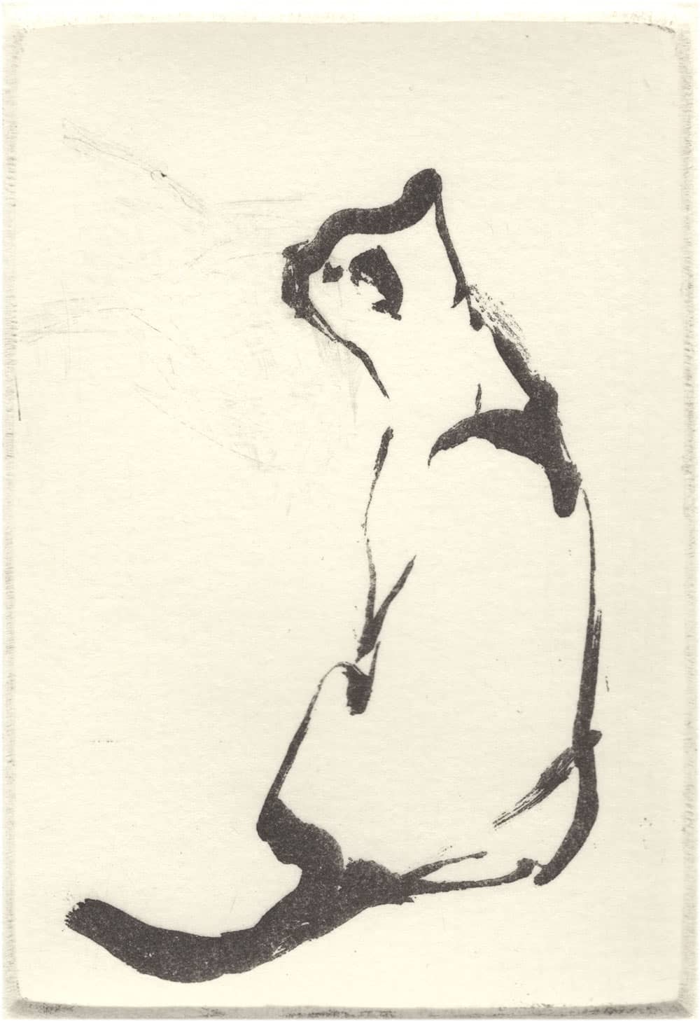 """Scent"" - brush drawing of a sitting cat catching a scent. Original print sugar-lift aquatint by painter-printmaker Marina Kim"