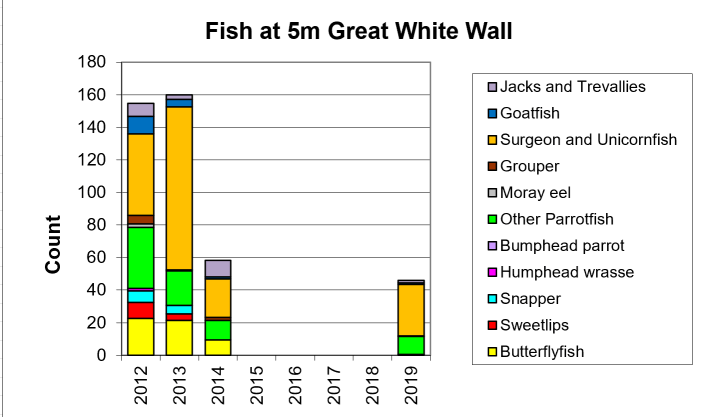 Figure 12:  Other Fish 10m Great White Wall -  Taveuni - Rainbow Reef