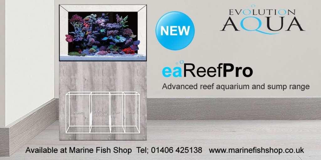 eareef pro aquarium fish tank