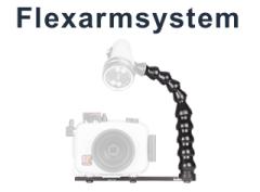 Flexarms