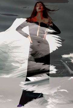 rarebird10