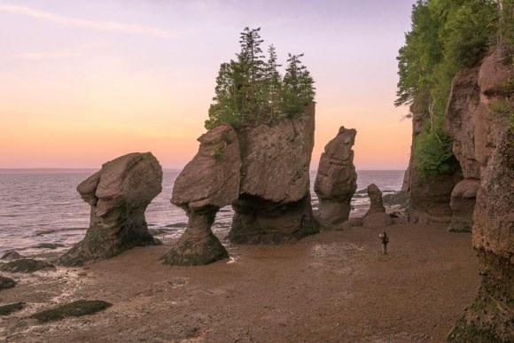 Hopewell Rocks Flowerpots Rocks con marea baja