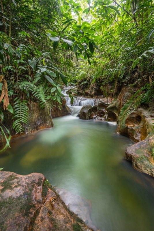 Río en el Caquetá, El Paraíso de Pedro