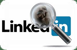 Mario Gentili su LinkedIn