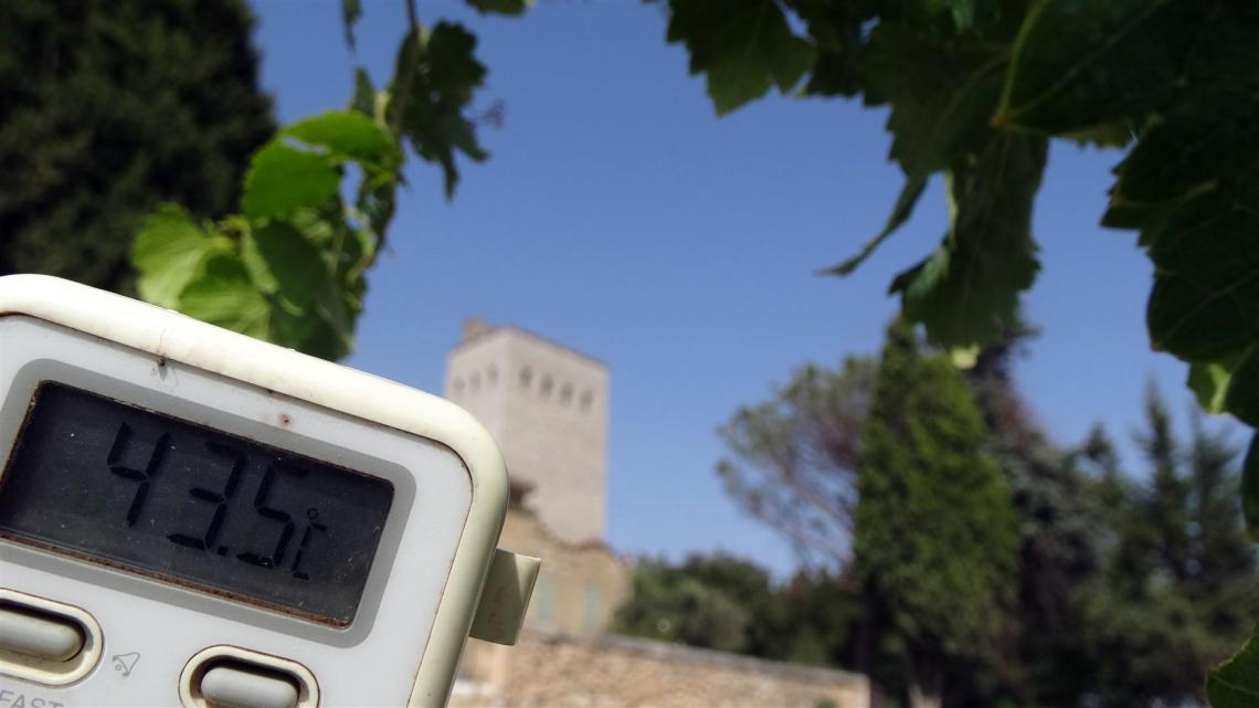 Some gas in my glass? Wine and climate change (1/3)