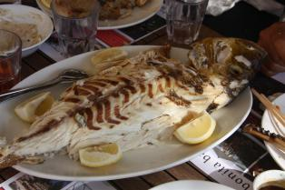 Fish restaurant in Lebanon