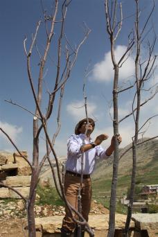 photo of Sami Ghosn in Faqra