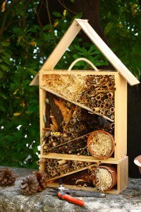 Photo d'une cabane à insectes