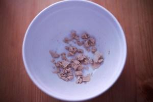 levure fraîche