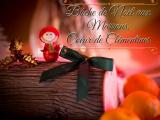 Bûche de Noël aux marrons coeur de clémentines