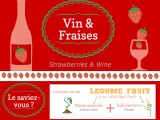 infographie vins et fraises strawberry wine infographics marion barral