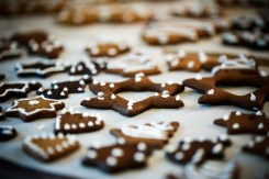 maison-biscuits-pain-d-epice-gingerbread-house-biscuits (3 sur 14) (Large)