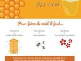 infographie miel miniature