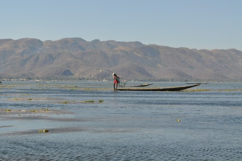 Lac Inle pecheur 1