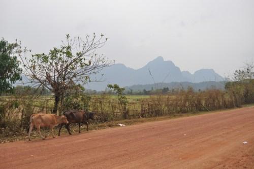 Vang Vieng paysage 3