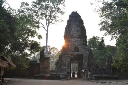 Angkor Ta Prohm 12
