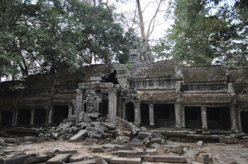 Angkor Ta Prohm 5