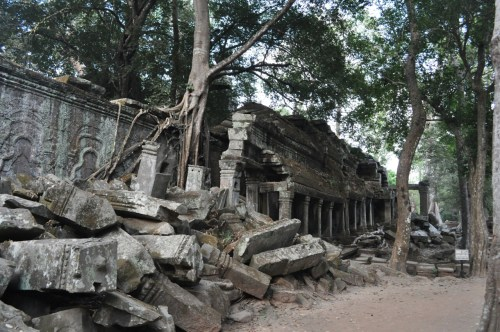 Angkor Ta Prohm 6