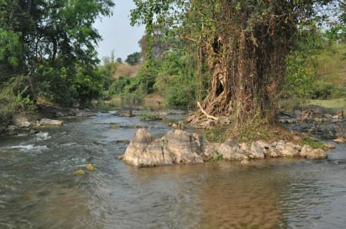 Don Khone riviere