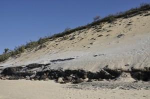 Dune Rainbow Beach 0811