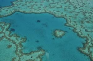 Heart Reef Airlie Beach 0803