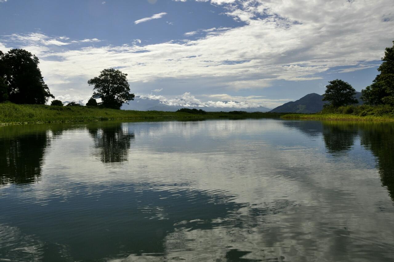 Cascade, plantation de café et observation des oiseaux au Lac de Yojoa