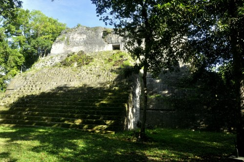 Tikal groupe P