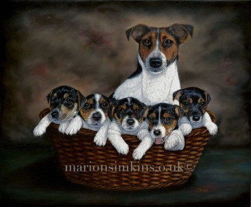 'Gravy & Puppies'-Jack Russell mother and puppies