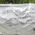 Passeio diferente em São Paulo: Hábitos sustentáveis e a Permacultura