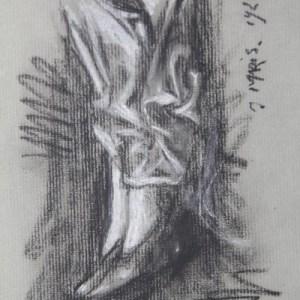 A-015 – 1926 Schoenen