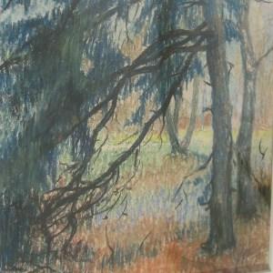 B-035-Landschapmetbomen(legaatCovers)