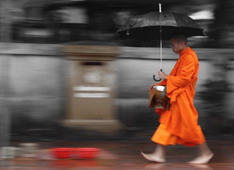 Monnik, Luang Prabang