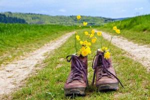 Lessons learnt while walking the Camino