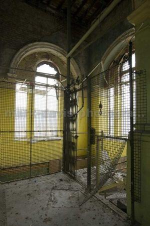 caged_sm.jpg