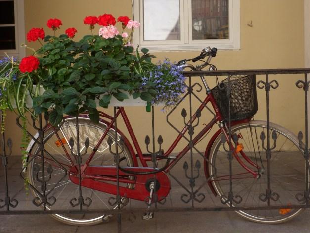 A bike in the University