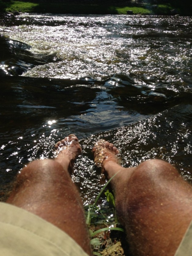 Sun, stream, rock, book - the four ingredients to happiness