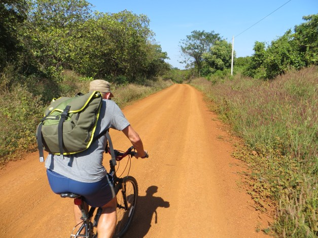 We didn't realize the degree to which the road was gradually downhill on the outbound. We did, however, notice that the road was distinctly uphill on the return. By the time we got back I was covered in red dirt and dog tired.