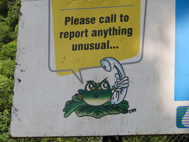 And a leftover picture from Penang. This was a sign at the Botanical Garden. Let's see, anything unusual? How about a frog with a telephone?!?