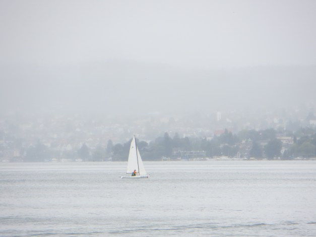 A little rain doesn't stop the true sailors on Lake Zürich