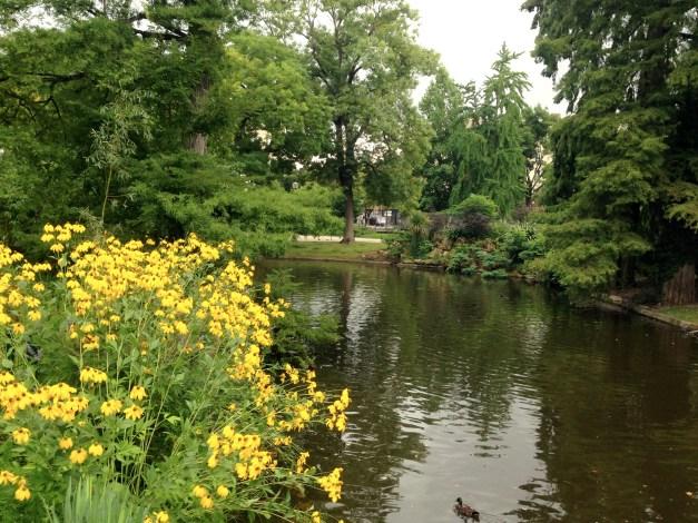 More of the Public Garden