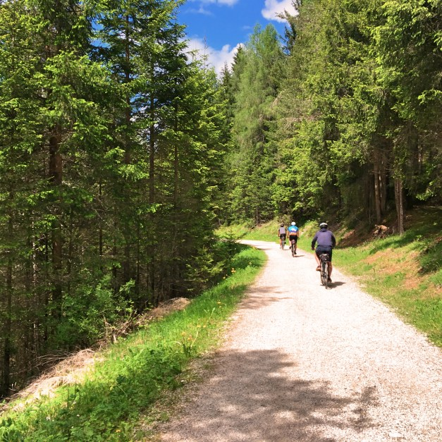 David, Marc, & Mark on the trail to San Candido
