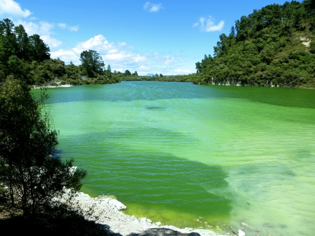 This green lake in Wai-O-Tapu was stunning