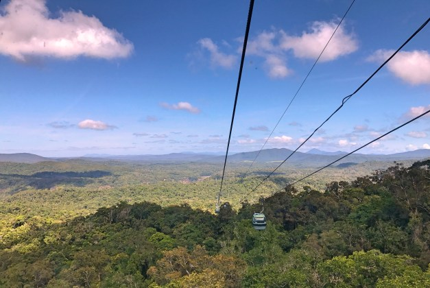 A segment of the cableway traveling above the rainforest